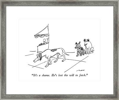 It's A Shame.  He's Lost The Will To Fetch Framed Print by Al Ross