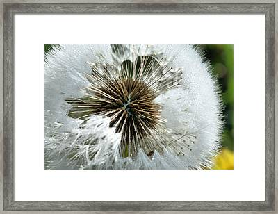 Its A Small World Framed Print by JC Findley