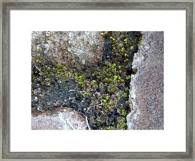 Framed Print featuring the photograph Its A Small World by John Glass