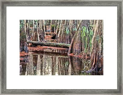 Its A Southern Thing Framed Print by JC Findley