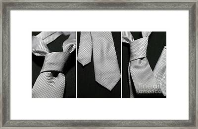 Framed Print featuring the photograph It's A Tie - Triptych by Trish Mistric