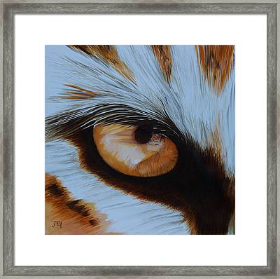 It's All In The Close Up Framed Print