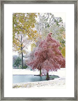 Its Beginning To Look A Lot Like Christmas Framed Print