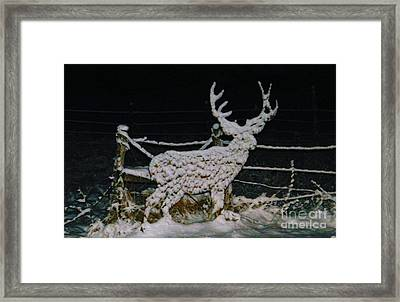 It's Cold Out Here Framed Print