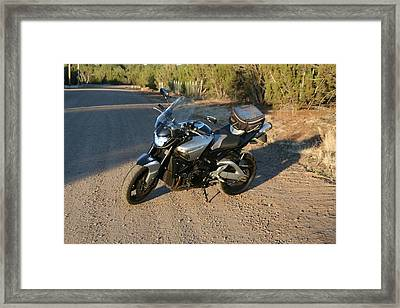 It's Good To B-king Framed Print