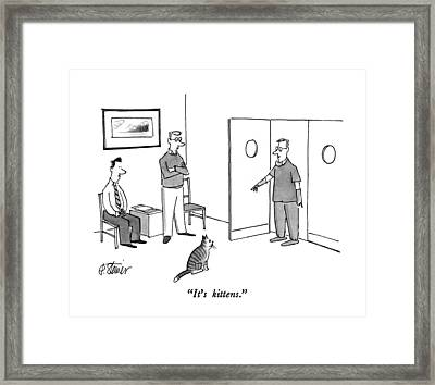 It's Kittens Framed Print