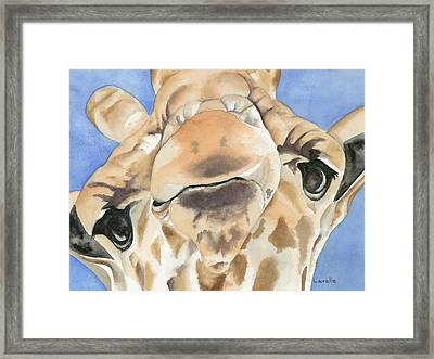 It's Lonely At The Top Framed Print by Kimberly Lavelle