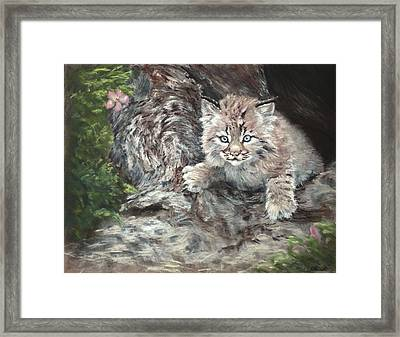 It's Monday Again Framed Print by Sandy Brooks