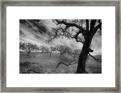 It's My Dreams You Take Framed Print by Laurie Search