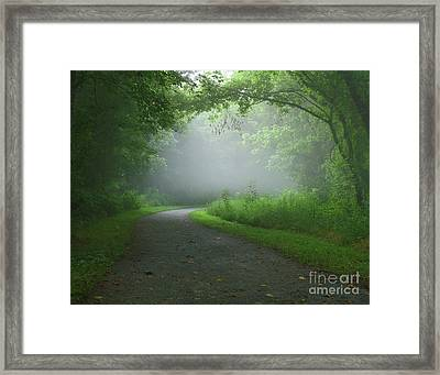 Mystery Walk Framed Print