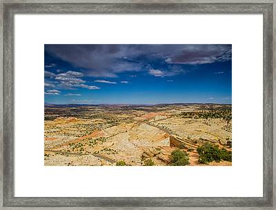 It's Out There Framed Print