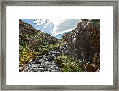 Framed Print featuring the photograph Its Raining Rainbows by Miroslava Jurcik