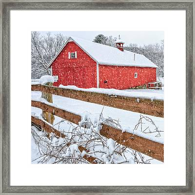 It's Snowing Square Framed Print by Bill Wakeley