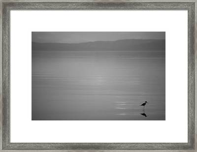 It's The Little Things - Black And White Framed Print