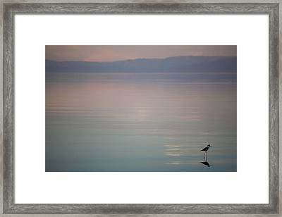 It's The Little Things Framed Print