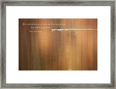 It's What You See Framed Print