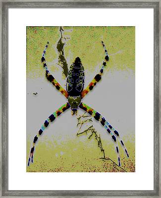 Itsy Bitsy Spider Framed Print by Rebecca Flaig