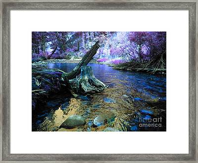 I've Been Dreaming Again Framed Print by Janice Westerberg