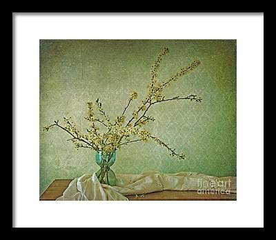 Flowering Plant Framed Prints
