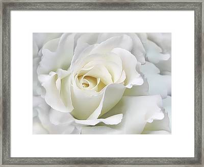 Ivory Rose Flower In The Clouds Framed Print by Jennie Marie Schell