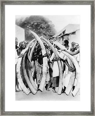Ivory Trade In Africa Framed Print