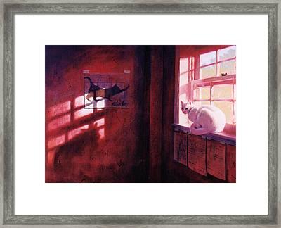 Ivory's Shadow Framed Print by Blue Sky