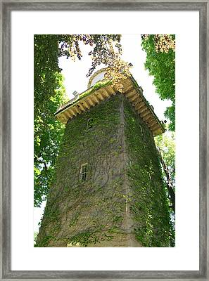 Ivy Along The Watchtower Framed Print