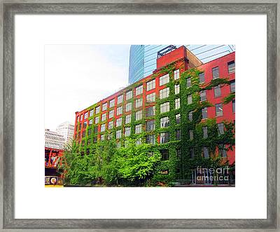 Ivy-covered Building On The Chicago River Framed Print by Matthew Peek