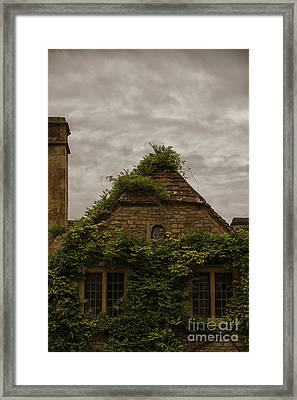 Ivy Covered Framed Print