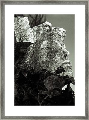 Ivy In Mourning Framed Print