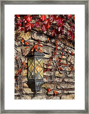 Ivy Lantern Framed Print by Frozen in Time Fine Art Photography