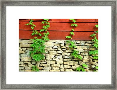 Ivy On Stone And Wood Framed Print by Jeffrey Kolker