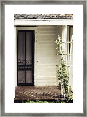 Ivy On Trellis Framed Print