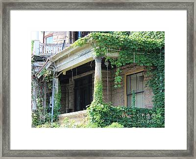 Framed Print featuring the photograph Ivy Take Over by Cynthia Snyder