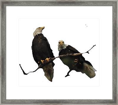 J6942 Broken Winged Bird Collection Framed Print