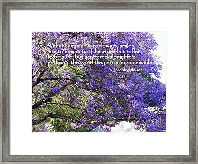 Jacaranda Beauty Smile Quote Framed Print by Marlene Rose Besso