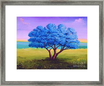 Flamboyan Tree Framed Print