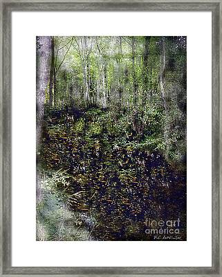 Jack Kell's Woods Framed Print by RC DeWinter