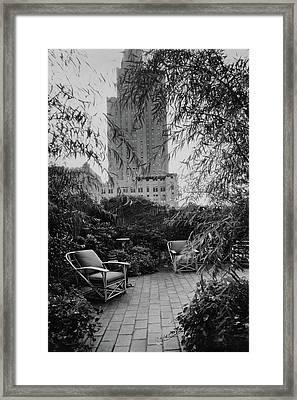 Jack Little's Garden In New York City Framed Print