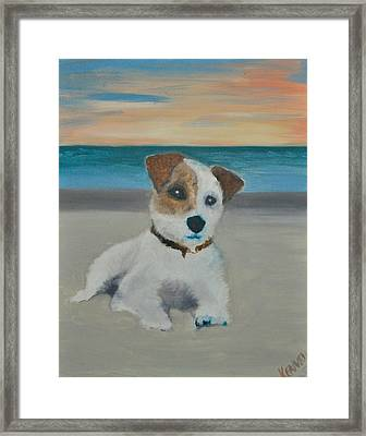 Jack On The Beach Framed Print