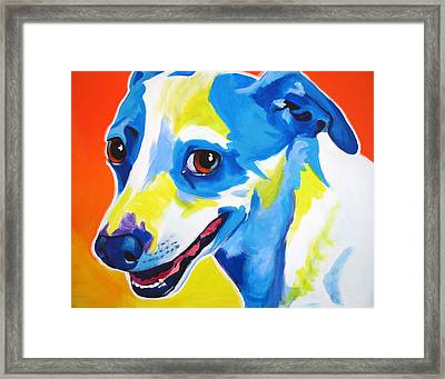 Jack Russell - Skippy Framed Print by Alicia VanNoy Call