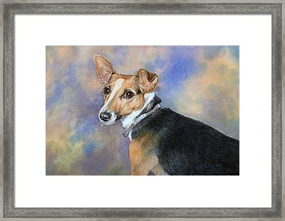 Jack Russell Framed Print by Anthony Forster