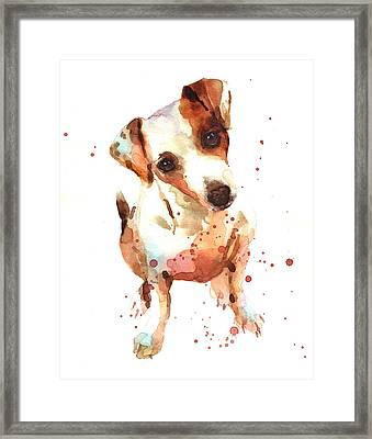 Jack Russell Painting Framed Print by Alison Fennell