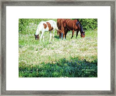 Jack Smokey And Camelot Painted Framed Print
