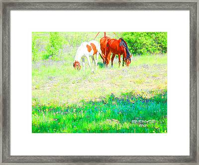 Jack Smokey And Camelot Texas Spring A Framed Print
