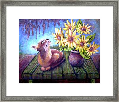 Jack The Cat Framed Print