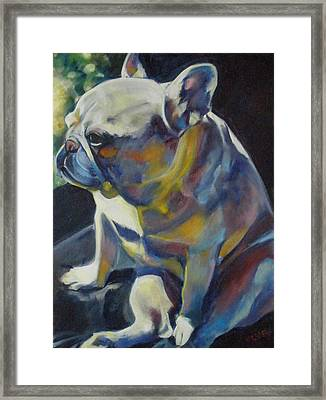 Jack The French Bulldog Framed Print