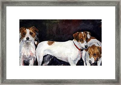 Jack Trio Framed Print by Molly Poole