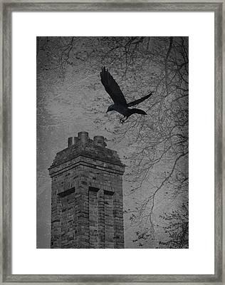 Jackdaw Flying To Chimney Framed Print