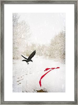 Jackdaw In Snow Framed Print by Amanda Elwell